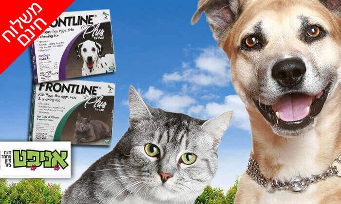 2 אמפולת פרונטליין פלוס לחתולים או לכלבים - משלוח חינם!