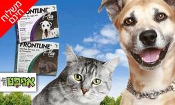 אמפולת פרונטליין לחתול ולכלב